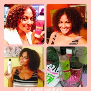 Hair Product Review: Mielle Organics